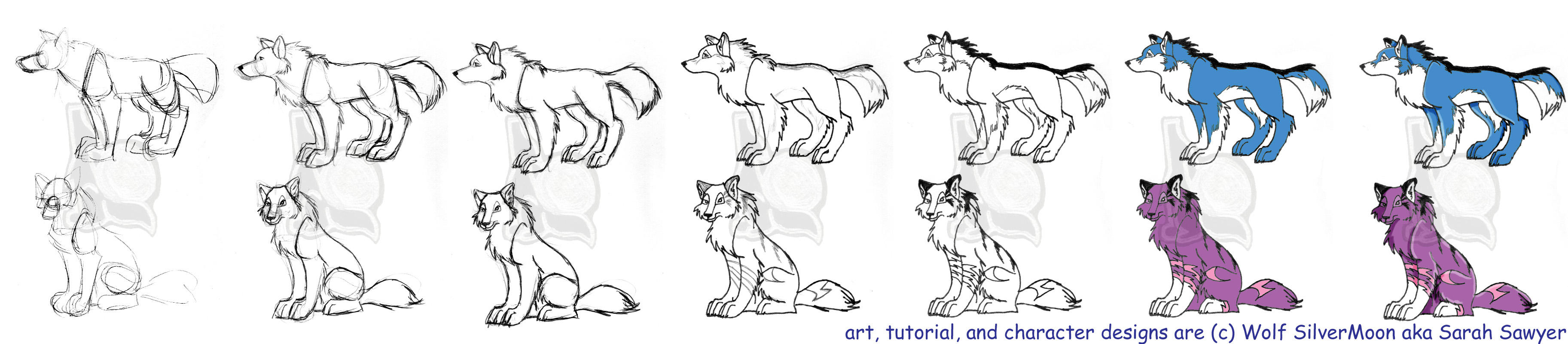 Drawing a Wolf- WSM Style by wolfsilvermoon