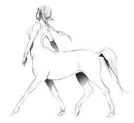 centaursI by doven