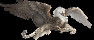 Aventuria Bestiary - Gryphon