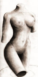 Body by B-R-O