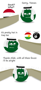 Saudi fences