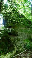 Nature reserve 7 by mirandaskye