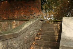 Stone steps in late summer by mirandaskye