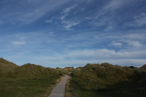 Path in the dunes by mirandaskye