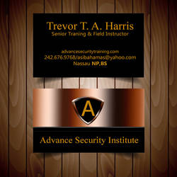 card  Design for Advance Security Institute by m0osegirlhunter