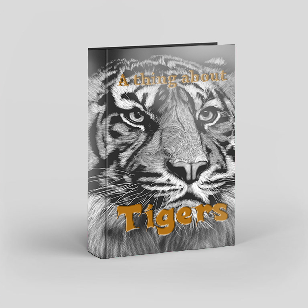 A thing about Tigers book illustration design by m0osegirlhunter