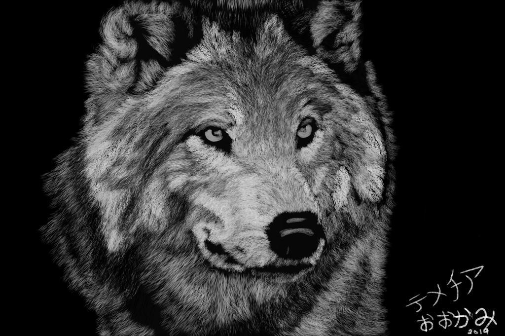 wolf by m0osegirlhunter