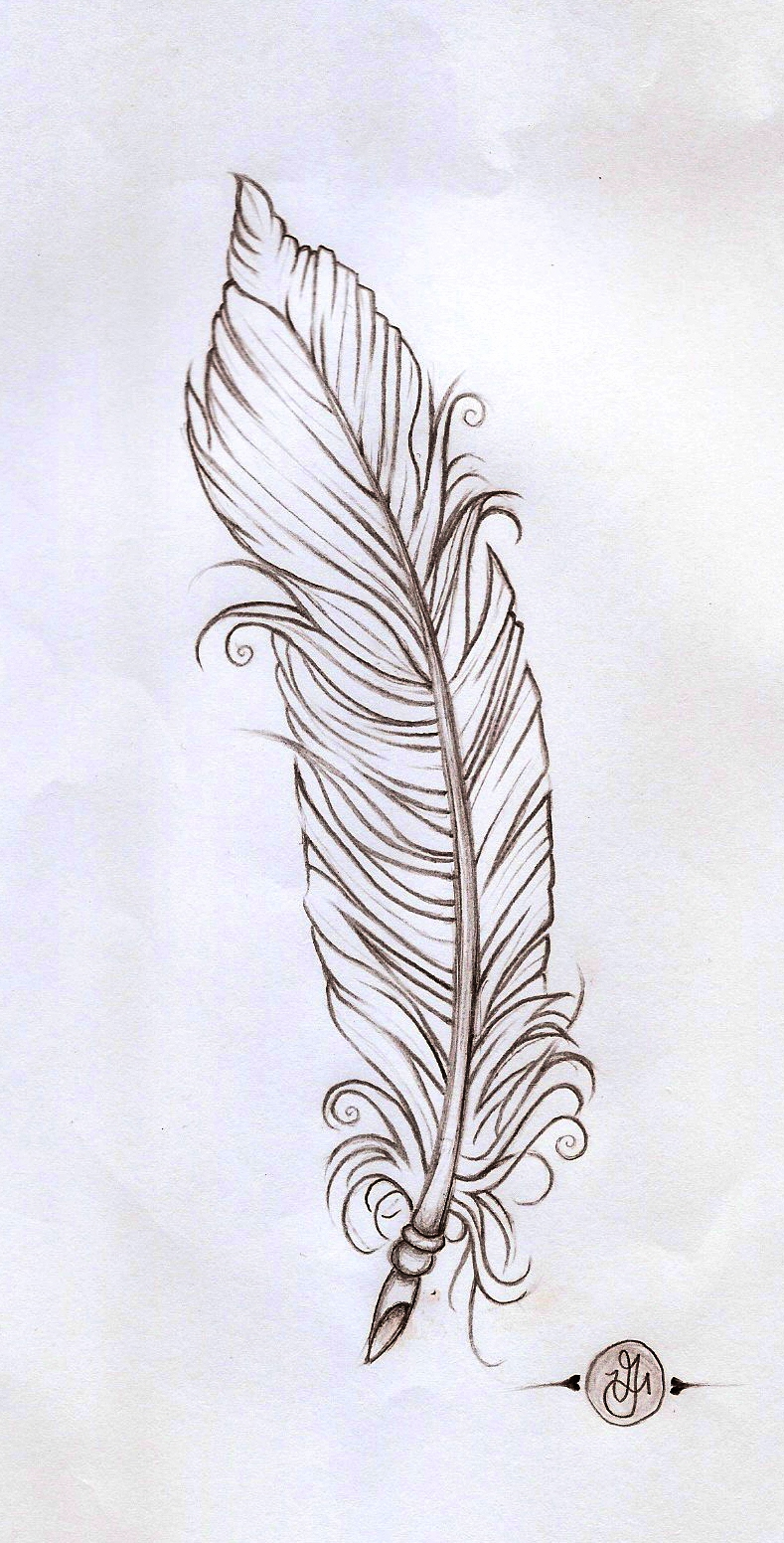 Line Art Feather : Feather linework by verisa on deviantart