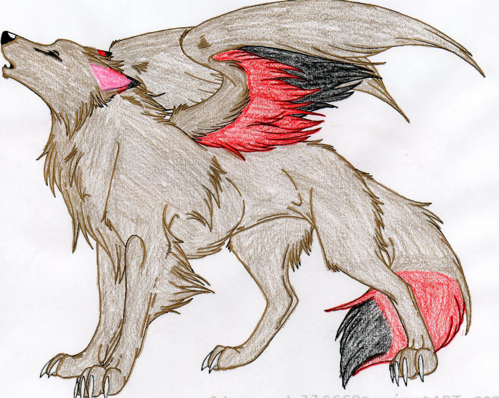 Winged Wolf Colored by DuetMaxwell