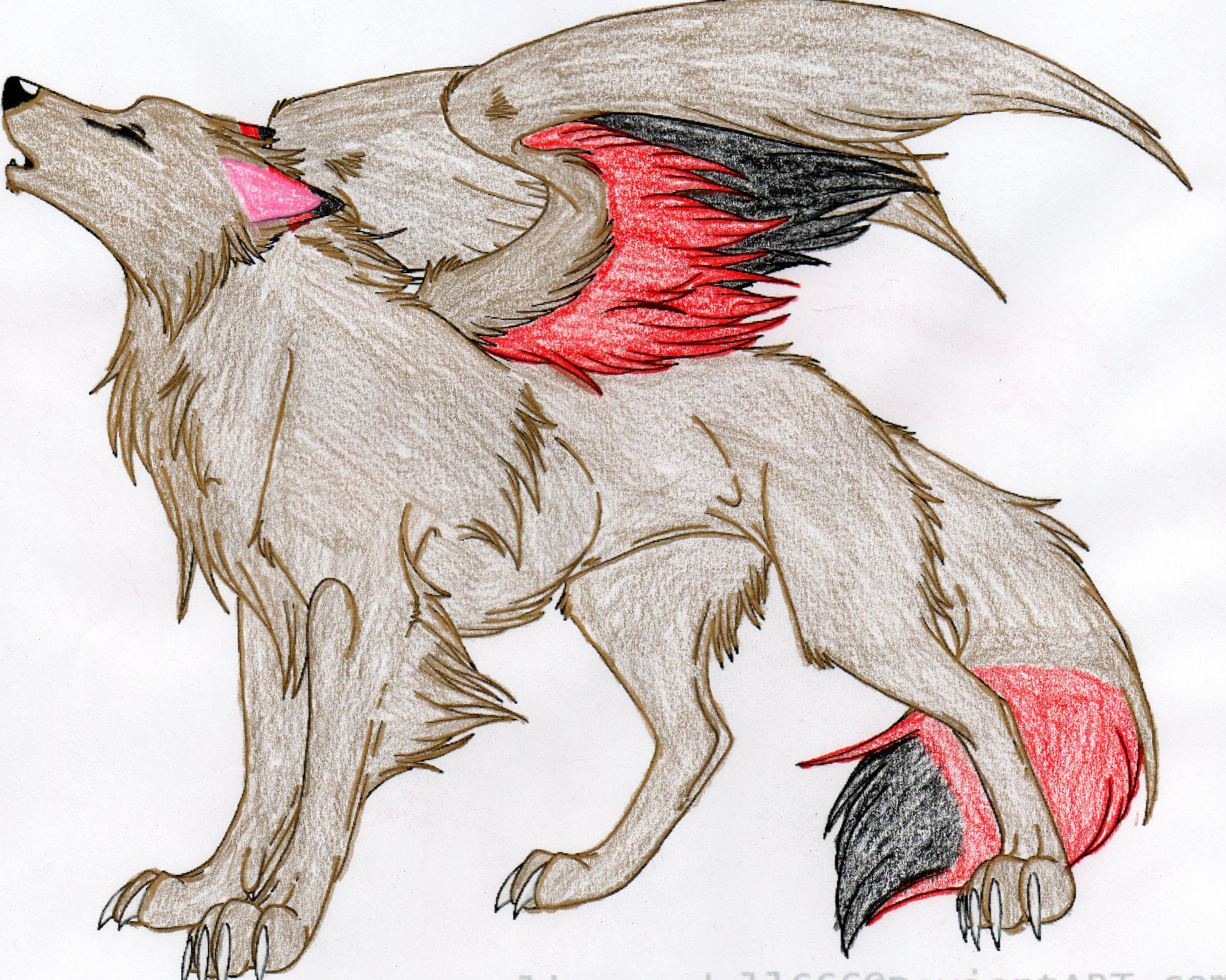 How to Draw a Winged Wolf Step by Step forest animals