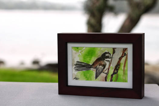 Fantail Painting by Becky Hunt