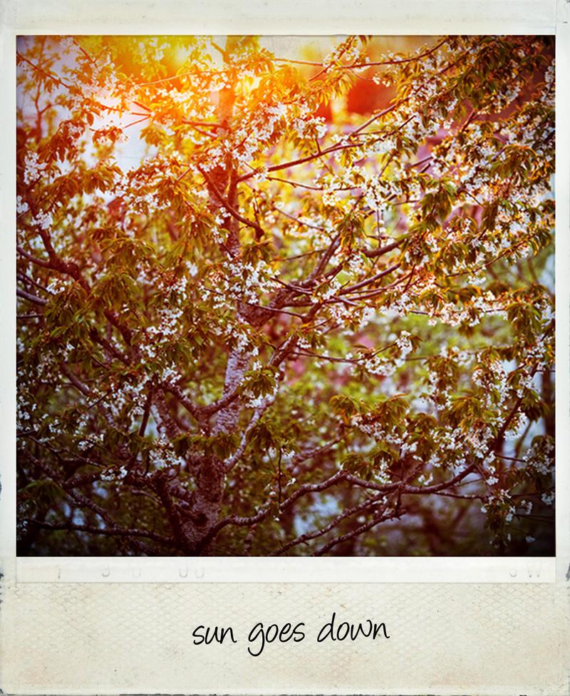 sun goes down by riskonelook