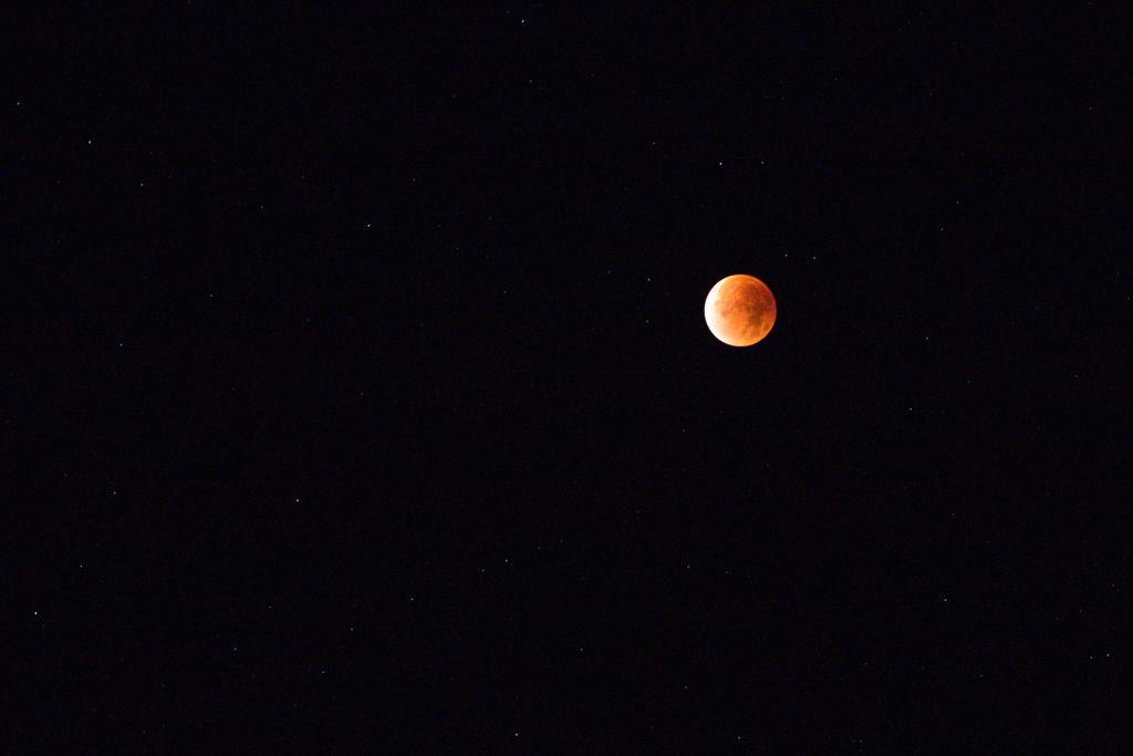 bloody moon by riskonelook