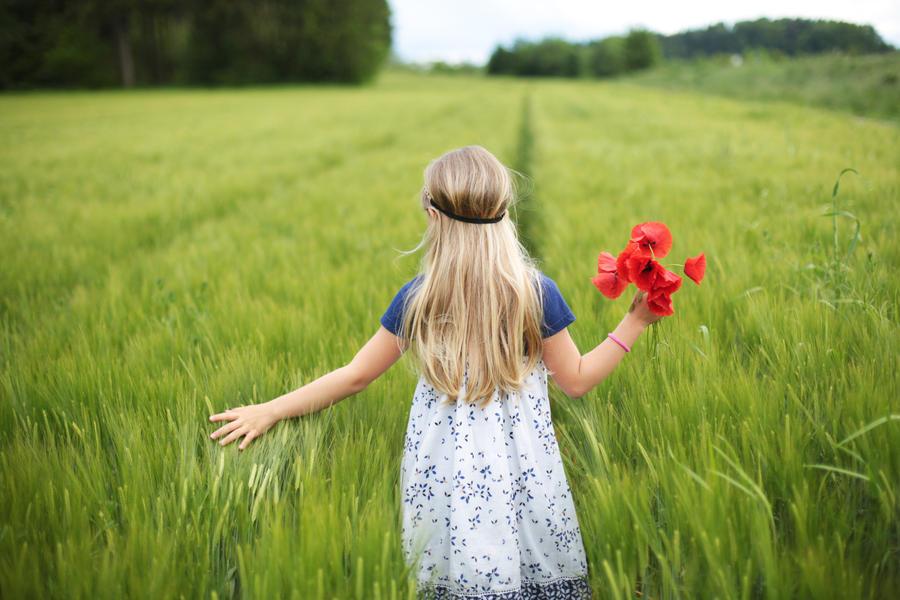wild flower by riskonelook