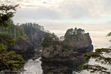 Cape Flattery Inlet by gentleworks