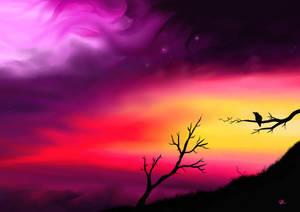 Strange Skys