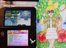 <b>Animal Crossing New Leaf Redraw</b><br><i>seles66</i>