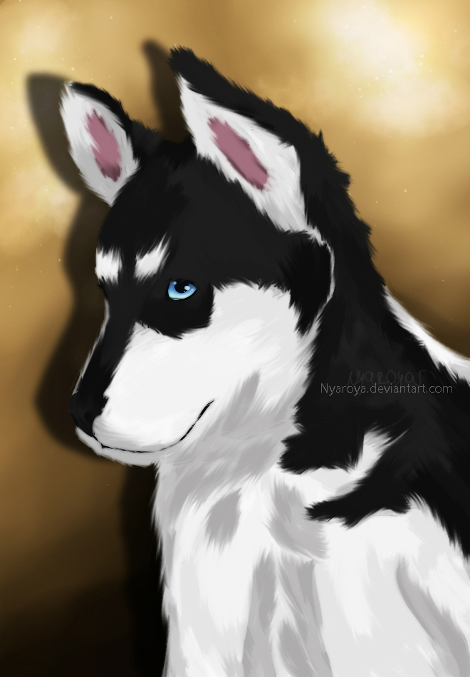 Husky by Nyaroya
