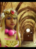 Toon Zelda Spirit Tracks by oOPrinzessinZeldaOo