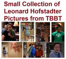 Leonard Hofstadter Collection