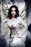 Fairy Eximia