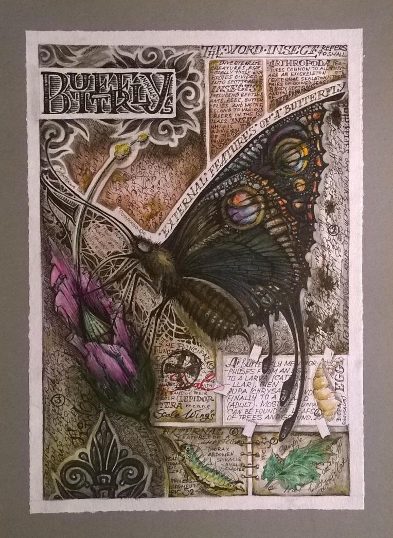 Butterfly by SouLitta