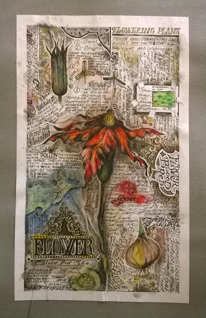 Flower by SouLitta