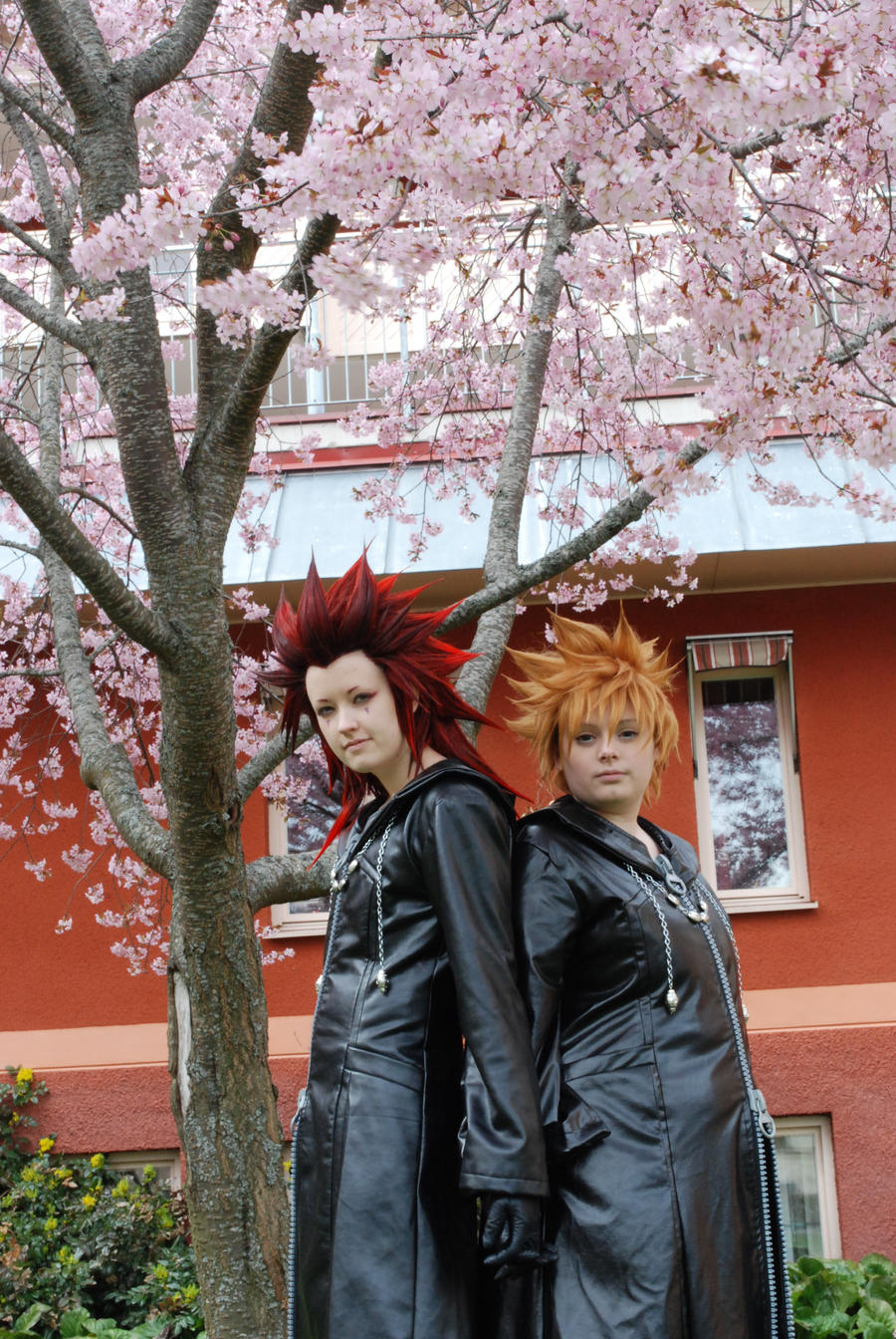 AkuRoku - Standing together. by Millahwood