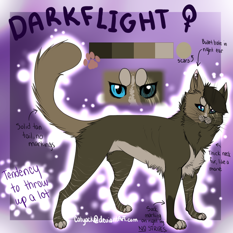 Warrior Cats Oc Reference Sheet – name