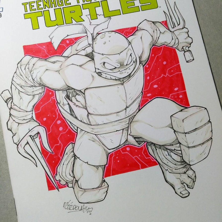 TMNT blank by renecordova