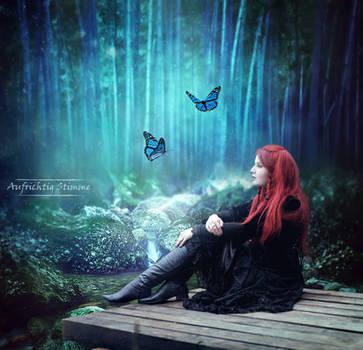 Magical forest by AufrichtigStimme