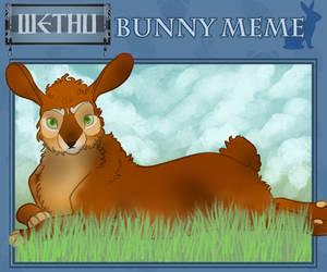 Jahe Bunny Meme by horsefreek151