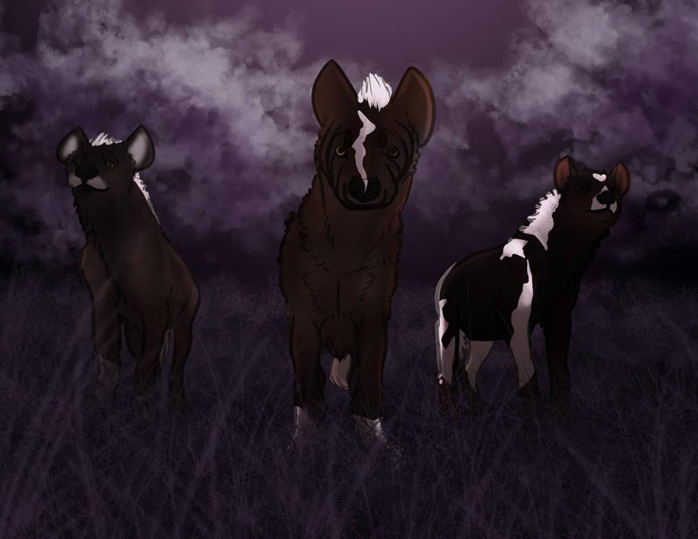 Djibbs 3 by horsefreek151