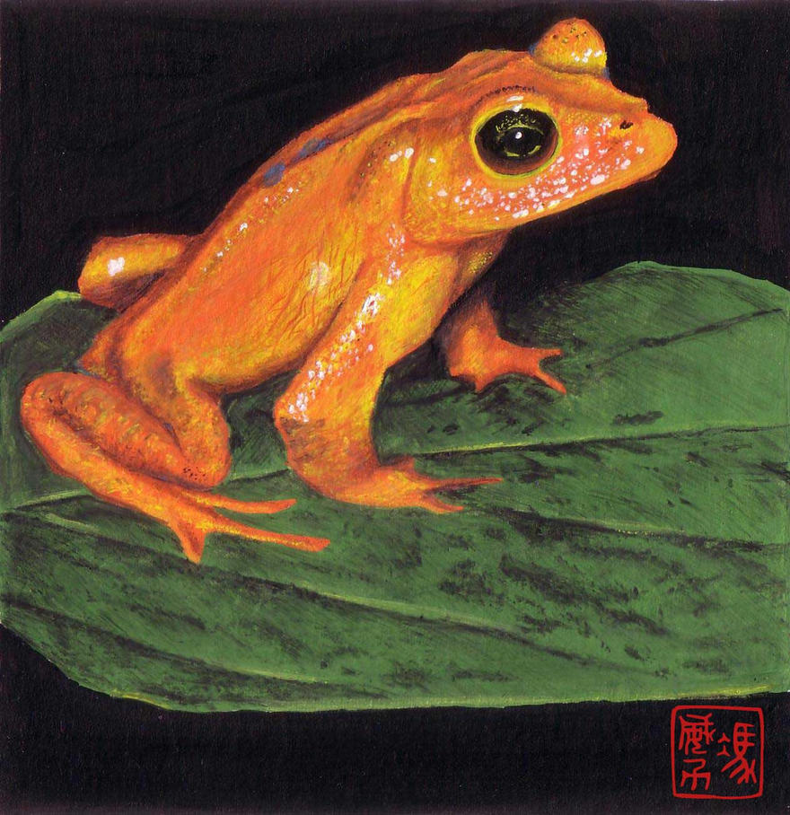 Froggie by WaiLik