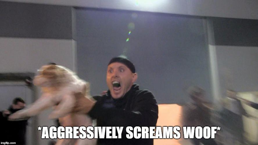 Aggressively Screams Woof by thetrollsapprentice
