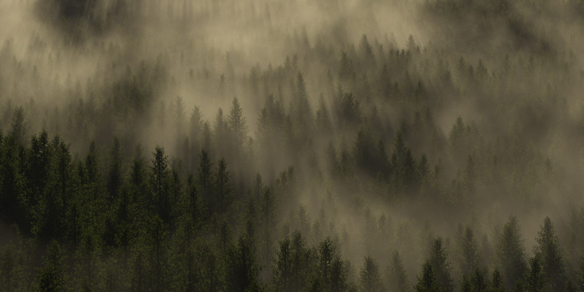 Simply forest by SwissAdA