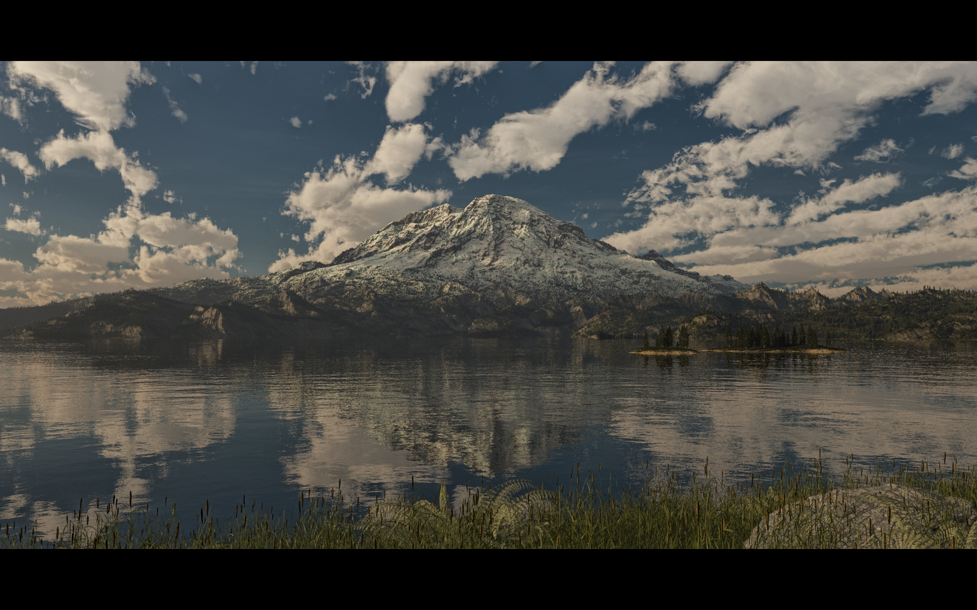Mt. Rainier by SwissAdA