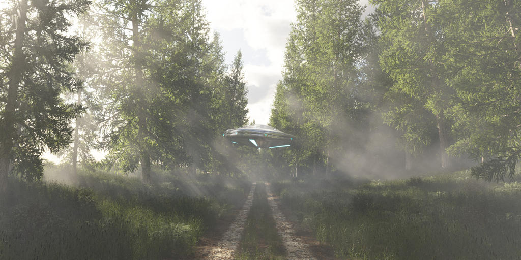 UFO in the forest by SwissAdA