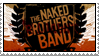 Stamp: Naked Brothers Band by Roxy317