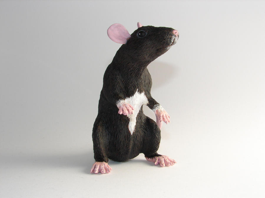 Warwick Rat Figure by philosophyfox