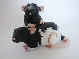 Hooded Fancy Rat Sculpture by philosophyfox