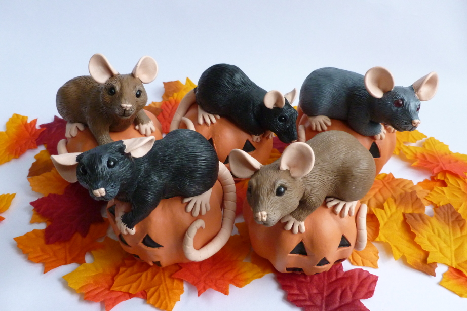 Pumpkin Rats Halloween 2016 by philosophyfox