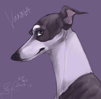 vanna in purple by swift-whippet