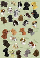 dog icons - SPORTING GROUP by swift-whippet