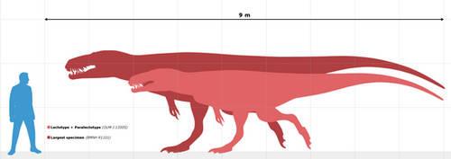 Megalosaurus: size chart