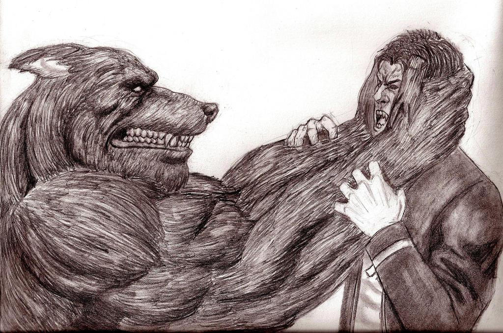 Werewolf VS. Vampire by blash4565 on DeviantArt