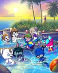 Splash Crossing