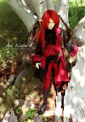 Scarlet Elf 2 by Aoi-kajin