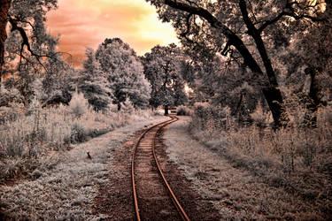 Setting Sun Across the Tracks by helios-spada