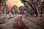 Setting Sun Across the Tracks